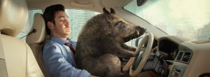 car-and-wild-boar